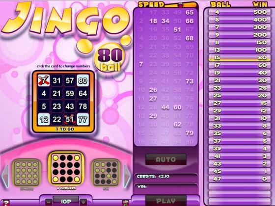 jingo-80